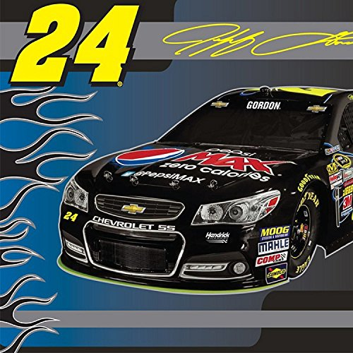 NASCAR #24 Jeff Gordon Car Race Racing Sports Fleece Fabric Panel (snc-3004-3a-1d)
