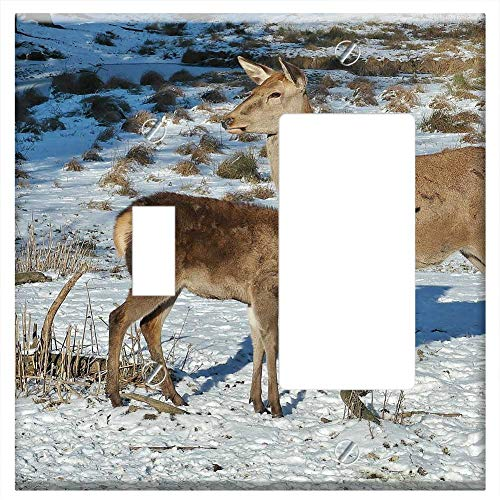 (1-Toggle 1-Rocker/GFCI Combination Wall Plate Cover - Deer Forest Fallow Deer Nature Wild Animals 2)