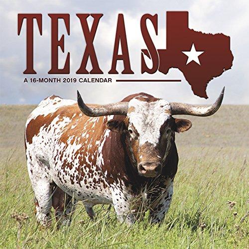 2019 Texas Wall Calendar