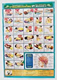 Body Massage Poster Thai Traditional Teaching Sketch Chart Health Training Print