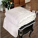 Shi Shang 100% Mulberry Silk Comforter Silk Filled Comforter Silk Quilt Silk Duvet(87x95inches) Doona Coverlet Blanket Bedspread for Winter Season Use(Queen, White)