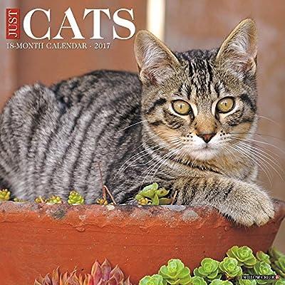 2017 Just Cats Wall Calendar