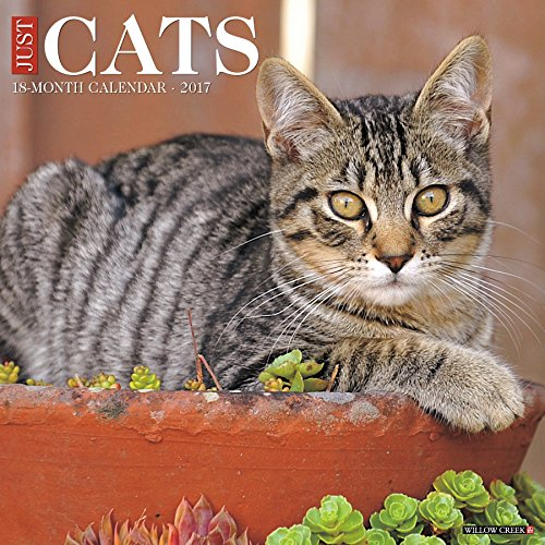 Just Cats 2017 Wall Calendar by Willow Creek Calendars