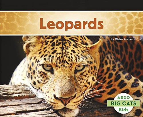 Leopards (Big Cats)
