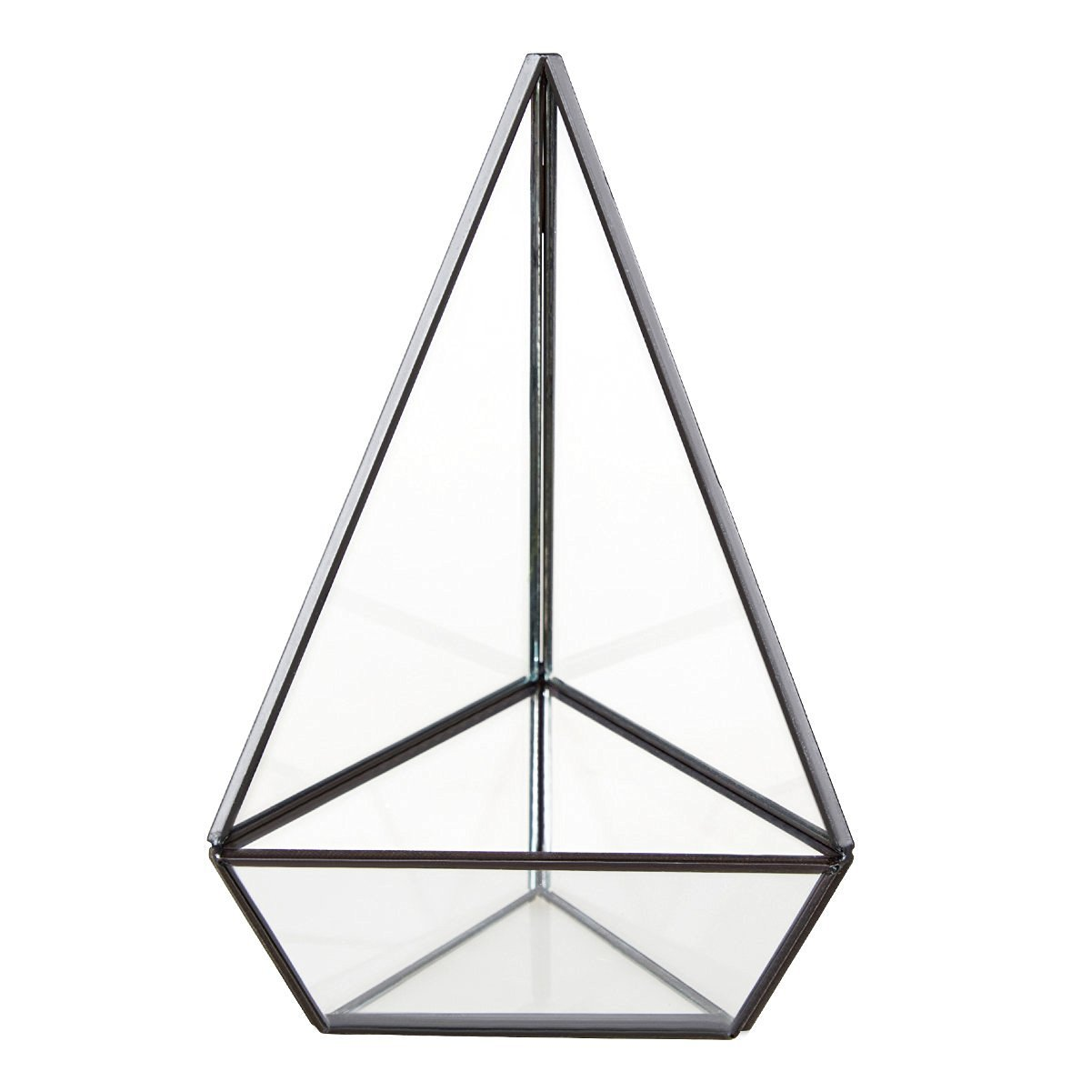 HOMEIDEAS Modern Terrarium Clear Glass Pyramid Tabletop Geometric Polyhedron Box,Decorative Succulent Plants Holder(Black), Gift for Mother's Day by HOMEIDEAS