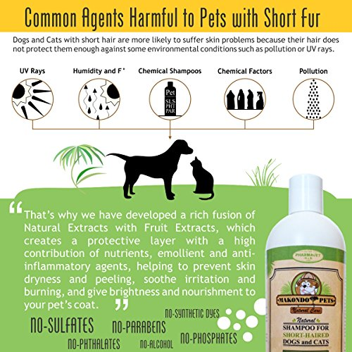 Dog Shampoo For Short Haired Pets Ideal Shampoo For ItchingDrySensitive Skin Natural SulfateParaben FreeScentedAnti FungalVeterinarian Formulated Short Haired Dog Shampoo By Makondo Pets