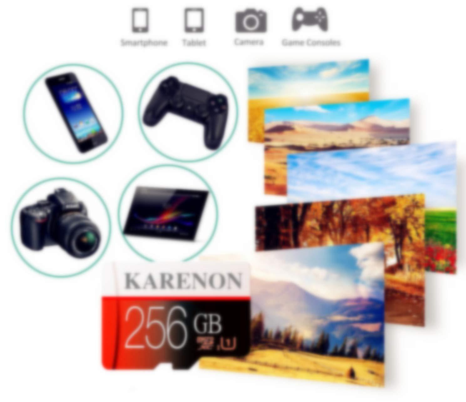 Karenon Tarjeta Micro SD 256 GB, microSDXC 256 GB Class 10 Tarjeta de Memoria + Adaptador (DS135-SQ) (256gb)