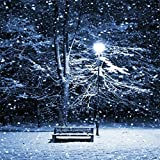 COOSA Snow Falling Light Christmas LED Snowfall Waterproof Night Light Projectors with Remote Control White Snowflake Flurries Rotating Spotlight Outdoor/Indoor Landscape Decorative Lighting for Christmas, Birthday, Halloween, Party, Weeding, Garden (Black, 16.9*7.8 Inches)