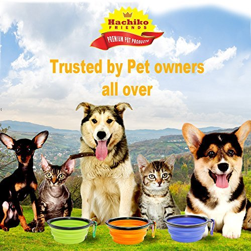Hachiko Friends 100%, Collapsible Pet, Dog & Cat Bowls for Food, Water, Small/Medium Pets. Food Grade Silicon Bowls for Outdoors. 2 Bowls & Matching Carabiners/Set