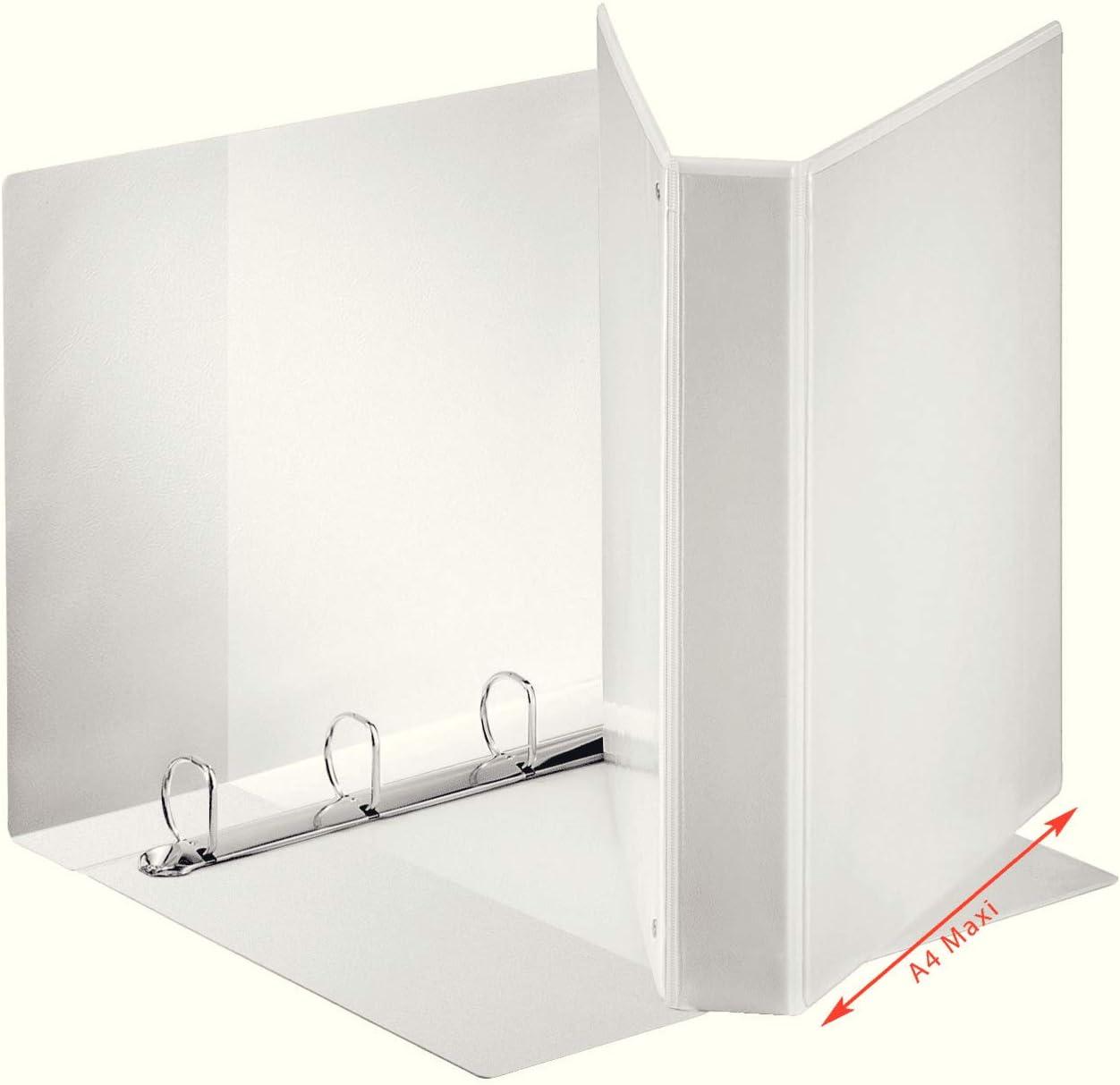Esselte 55291 - Carpeta: Amazon.es: Oficina y papelería