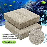 boxtech Aquarium Filter Media, Ceramic Biological Filter Media for Marine and Freshwater Fish Tank, Two Pcs