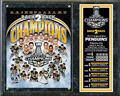 - Pittsburgh Penguins 2017 Stanley Cup Champions Wood Plaque (Size: 12