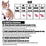 120Pcs Colorful Soft Cat Nail, Caps Claws Control