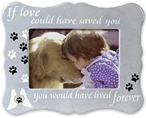 Banberry Designs Pet Memorial Picture Frame If Love Could Have Saved You Pet Frame Paw Prints And Angel Wings Pet Supplies Amazon Com