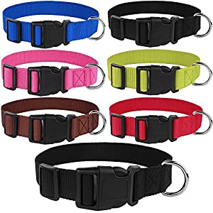 CollarDirect Nylon Dog Collar Side Release Buckle Adjustable Puppy Collars for Dogs Small Medium Large (S Neck Fit 9-14 inch, Black)