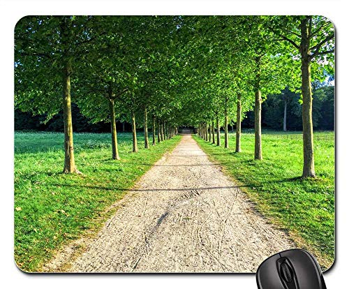 Mouse Pad - Landscape Tree Allee Path