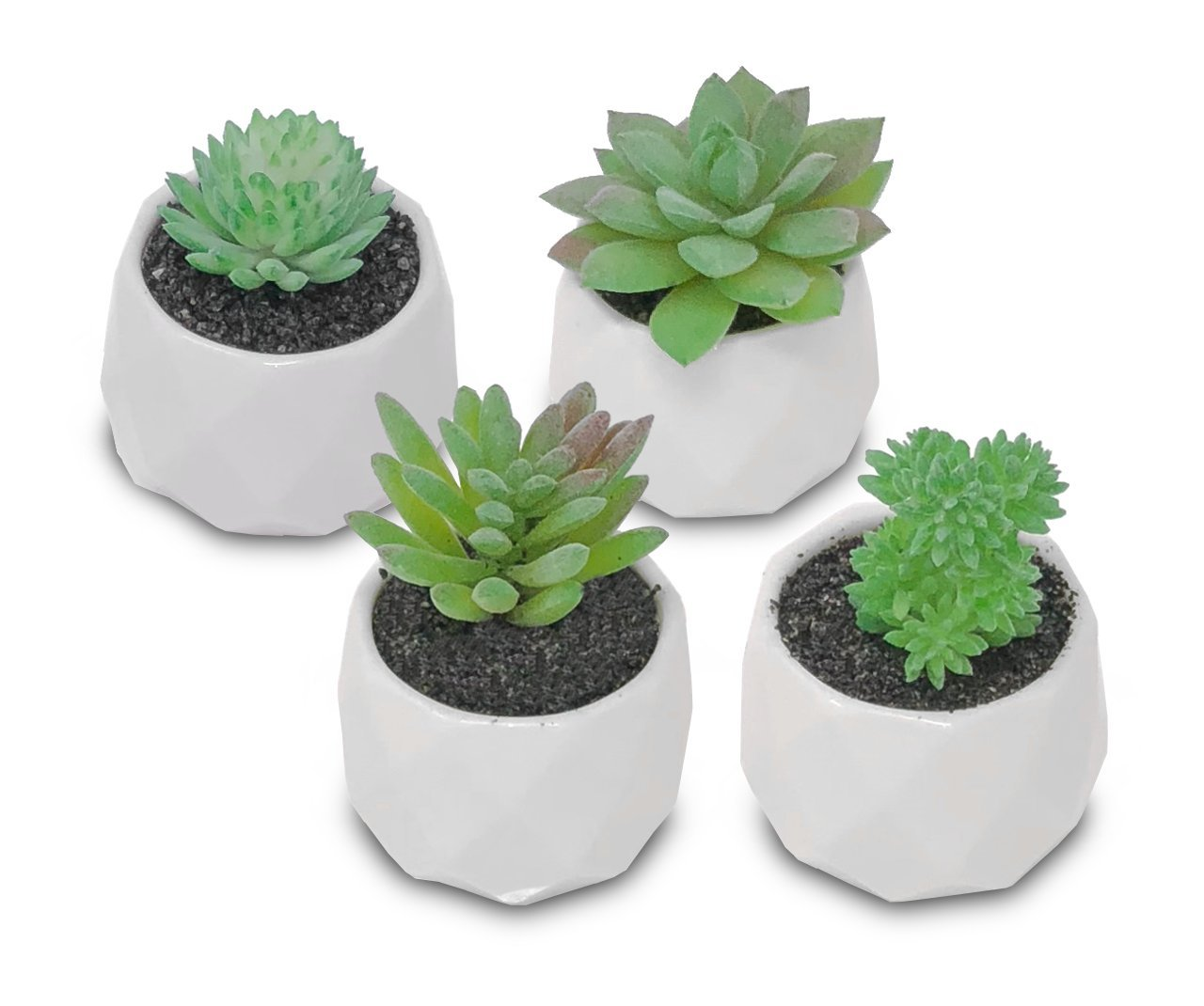 melonluchi Assorted Potted人工多肉植物植物装飾人工フェイクアロエEcheveriaプランターポット、4のセット(ホワイトセラミック) B07CPQT1ZV