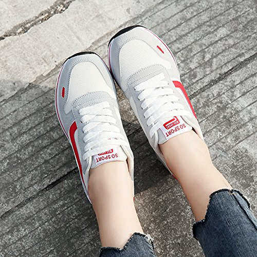 Zapatos Zapatos de de Correr red nuevos Casuales Verano Hasag Deportivos para Mujeres Zapatos Estudiantes Primavera q5RHUSF