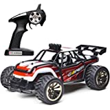 Demaxis Offroad RTR Rc Electric Cars, 2wd Rc Dune Desert Buggy, Rechargeable 2.4 g