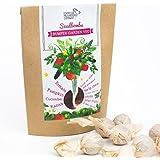 Espresso Mushroom Company Bumper Garden Veg Seedbomb to Grow Tomato/ Pumpkin/ Cucumber/ Radish