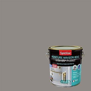 Syntilor Peinture Maison Bois Intensiv Protect 12 Ans Gris Cendré