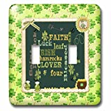 3dRose Beverly Turner St Patrick Day Design - Words, Faith, Luck, Blessed, Leaf, Irish, Shamrock, Saint Patrick - Light Switch Covers - double toggle switch (lsp_282043_2)