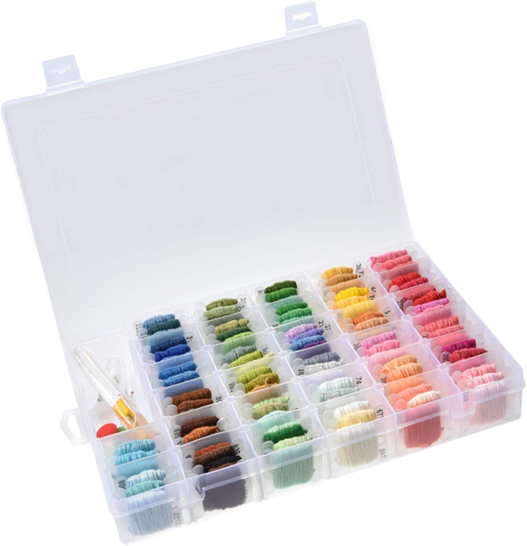Tosnail - Hilo de punto de cruz, 100 colores, para pulseras de la amistad, con caja de almacenamiento organizadora, herramientas de costura incluidas: Amazon.es: Juguetes y juegos