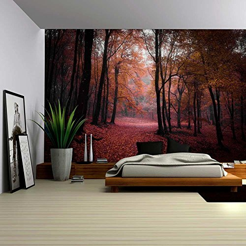 Autumn Time in a Forest Wall Mural