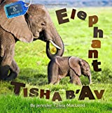 Elephant Tisha b'Av (Jewish Nature) (Volume 4)