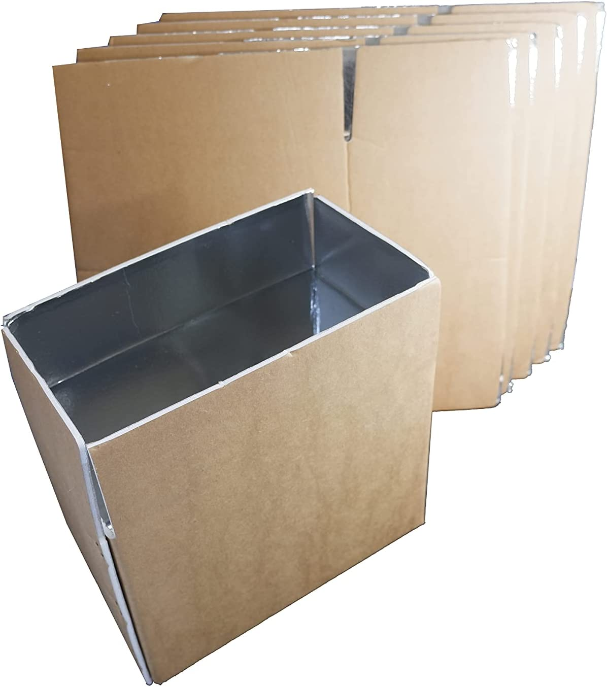 ARCTECH insulated shipping foam Aluminum foil box X 5packs , middle size useful space 10X5.7X7'' Insulated delivery mail mailing carton for fresh, frozen sea food, milk, meat.