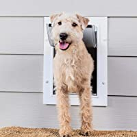 PetSafe New Wall Entry Dog and Cat Door - Pet Door with Telescoping Tunnel - Small, Medium,…