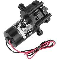 Hilitand 12V ZC-A250 Mini Bomba de Agua autocebante Resistente a la corrosión con Engranaje de CC Bomba de Agua portátil