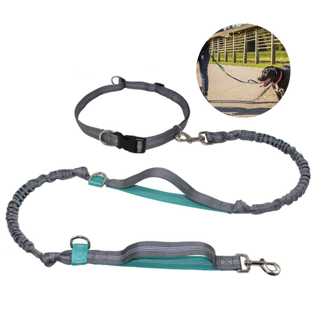 Hands Free Running Dog Leash,Double Handles Belt Reflective Shock Absorbing
