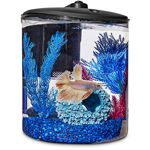 (Imagitarium Cylindrical Betta Fish Desktop Tank Kit, 1.6 gal, 2.5 LB)