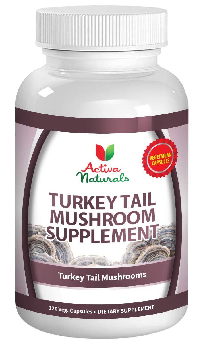 Turkey Tail Mushroom Supplement – 120 Veg. Capsules with Coriolus Versicolor Mushrooms