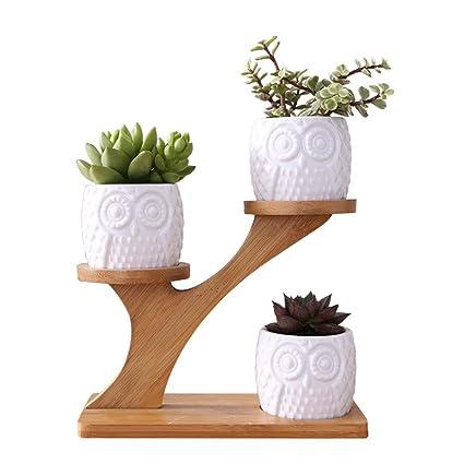 prokth pot de fleur interieur tagre fleurs en bois support plante porte plantes pour cactus