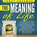 The Meaning of Life: Guided Meditation Hypnosis to Find Your Purpose, Gain Insight, Find Your Passion and Discover What Matters Most with Guided Imagery and Visualization Techniques Speech by Tobey Hoffman Narrated by Jason Kappus