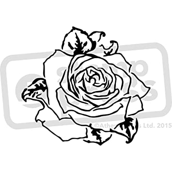 amazon com a4 rose flower head wall stencil template