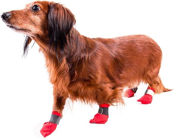 Hundeschuhe Red Booties 4 St/ück S