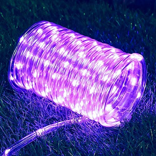 Hopolon Outdoor Rope String Lights, 4.5V Safety UL Plug Powered Waterproof Tube Light with 100 LED, 33 feet 8 Modes Copper Fairy Lights for Garden Fence Patio Yard Wedding Christmas Hall Purple
