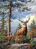 Buffalo Games Hautman Brothers, Standing Proud (Deer) - 1000pc Jigsaw Puzzle