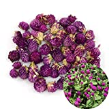 TooGet Dried Gomphrena globosa Flower, Natural Globe Amaranth Flower Wholesale Best for Flower DIY, Sachets, Wedding Party Decoration, Potpourri, All Kinds of Crafts - 4 oz