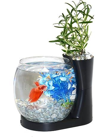 Amazon Com Fish Bowls Aquariums Fish Bowls Pet Supplies