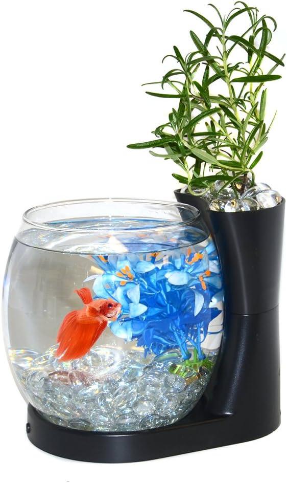 Elive Betta Fish Bowl / Betta Fish Tank with Planter, Small 0.75 Gallon Aquarium, LED Light Timer, Black