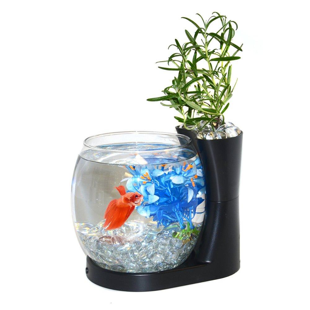 Elive Betta Fish Bowl / Betta Fish Tank with Planter, Small 0.75 Gallon Aquarium, LED Light Timer, Black by Elive