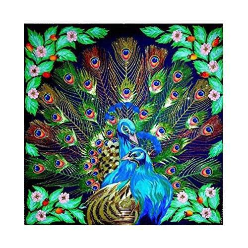 4477c96351 Diamond Painting Kits Full Drill,Astory DIY 5D diamond painting kits  Rhinestone Crystal Embroidery Pictures Cross Stitch Art Craft for Home  Decor Peacock ...
