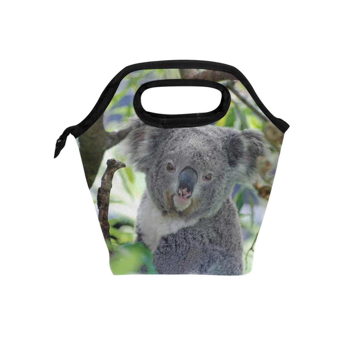 6286562e4b41 Amazon.com - HEOEH Cute Koala Australia Animal Lunch Bag Cooler Tote ...
