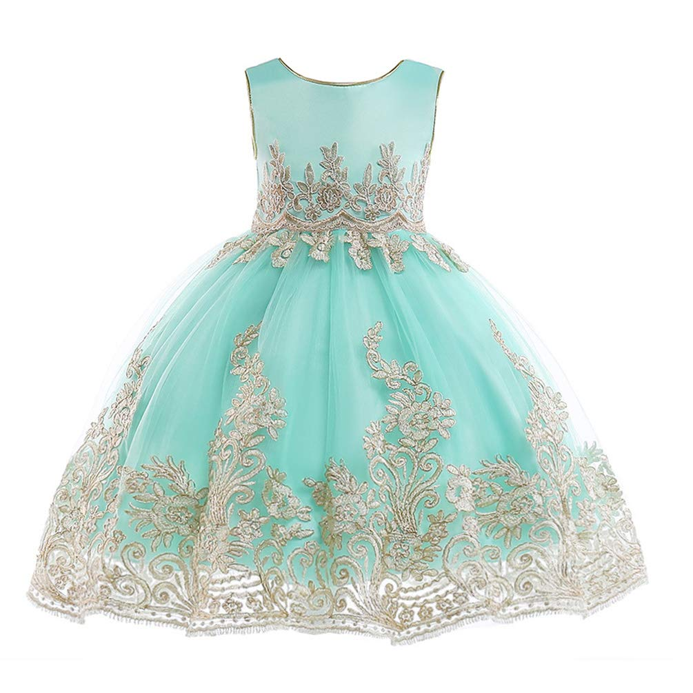 60895ed0371 JIANLANPTT Kids Flower Girl Lace Embroidery Party Dress Children Bridesmaid  Toddler Elegant Dress Vestido 6-7Years Mint Green 1