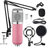 BM-800 Condenser Microphone Kit, Recording Kit with Adjustable Microphone Holder and Double-Layer Filter, Studio Microphone f