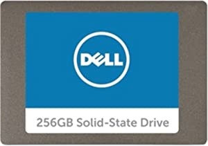 Dell Serial ATA Solid State Hard Drive - 256 GB